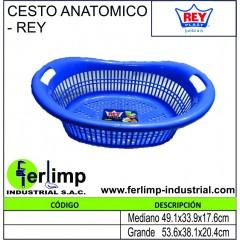 CESTO ANATOMICO - REY